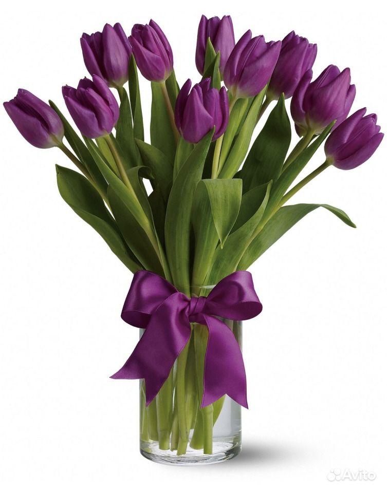 Цветы в омске дешевые