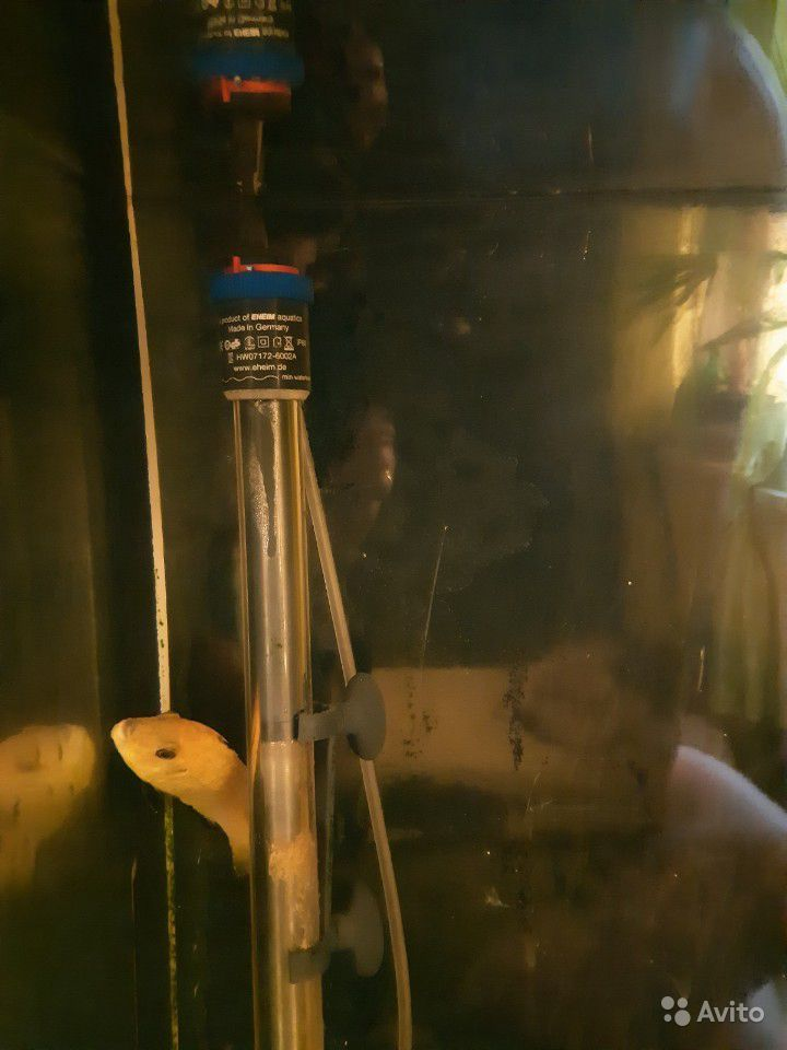 Аквариум 270 л, бу купить на Зозу.ру - фотография № 4