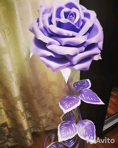 Сиреневая ростовая роза