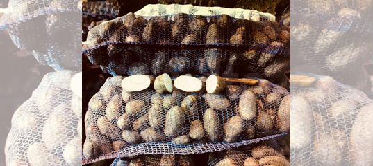 Овощи оптом в Тамбове