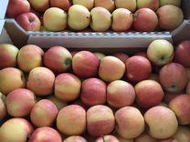 Яблоки — Продукты питания в Краснодаре